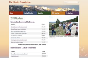 Easy to update and add tables display the foundation's grants for extra transparency.