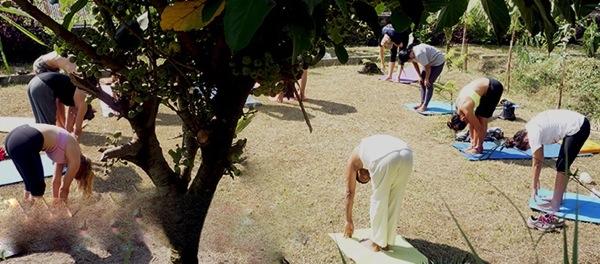 Yoga practice in the yoga holiday garden