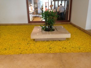 This indoor water feature in our hotel is completely covered with flower petals