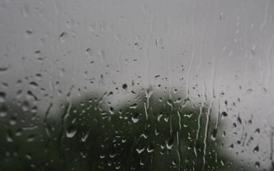 Monsoon life