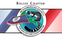 msbc-logo