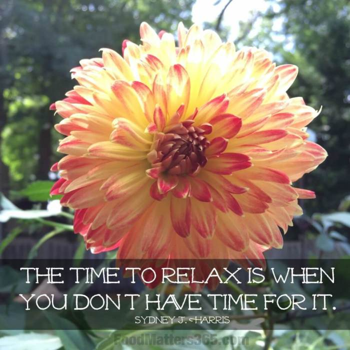 Time to Relax Quote by Sydney Harris