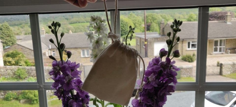 Organicup Menstrual Cup in Bag