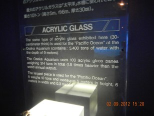 The aquarium is made of 30 cm thick acrylic glass
