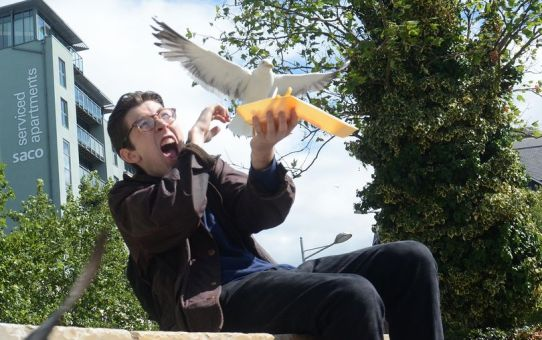 Do you work with a seagull? Have you been victim to the swoop and poop? Find out how to manage people who like to take a dump on your day.