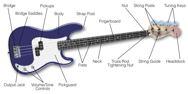 Bass Guitar Diagram