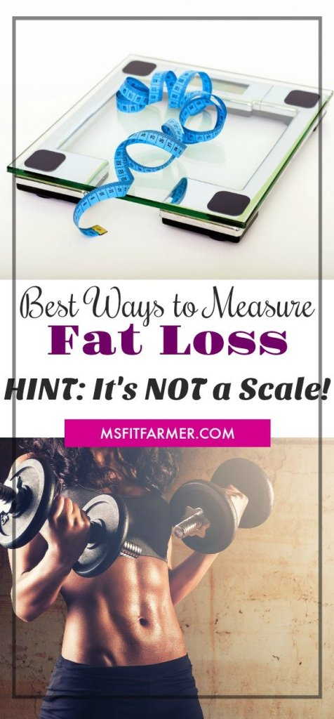 Body Fat Percentage | Body Fat Measurement | How to Calculate Fat Percentage | Body Fat Caliper | How to Lose Weight Fast | More Health and Fitness at https://msfitfarmer.com