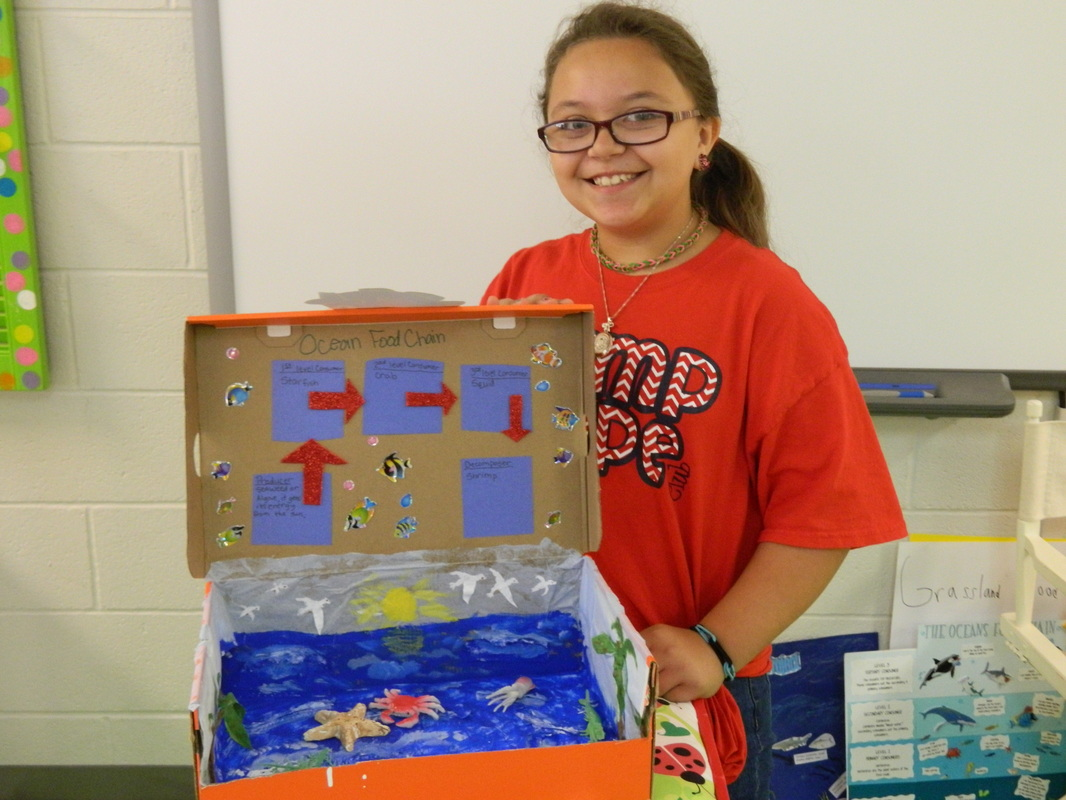 Our Awesome Food Chain Projects