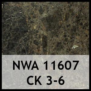 Nwa 11607