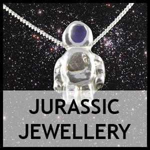 'Jurassic Jewellery' Meteorite Jewellery