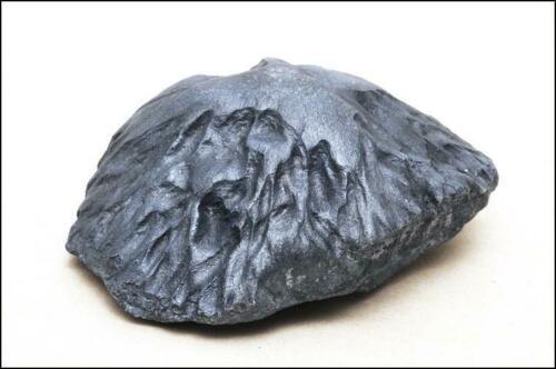 Middlesbrough oriented meteorite cast 4