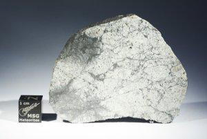 Vinales meteorite (95)