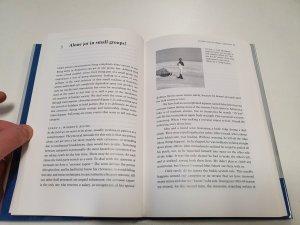 Meteorites ice antarctica book (10)