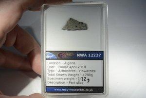 Nwa 12227 howardite (25)