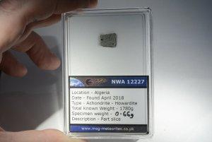 Nwa 12227 howardite (36)