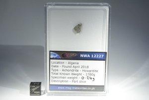 Nwa 12227 howardite (49)