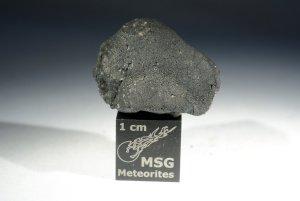 Tarda carbonaceous chondrite (15)