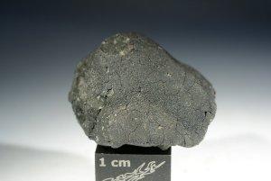 Tarda carbonaceous chondrite (16)