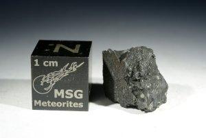 Tarda carbonaceous chondrite (25)