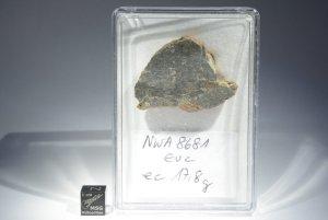 Nwa 8681 (1)