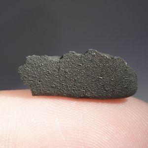 Tarda carbonaceous (25)