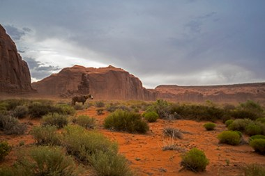 Horsey Monument Valley