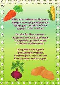 stihi_ovoshi_2