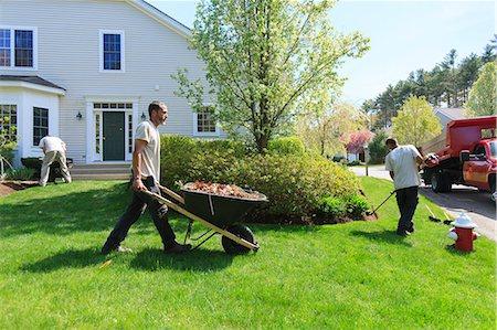نظافة الحدائق