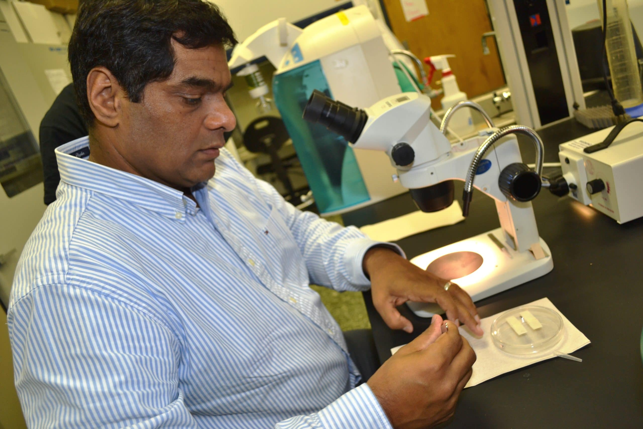 USM's Dr. Shahid Karim Receives Grant for Research on Infectious Disease