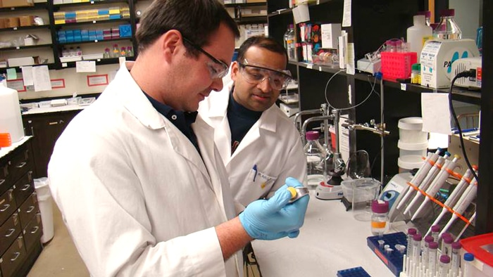 USM Researcher, Dr. Rangachari is Awarded an R01 for his research on Alzheimer's Disease