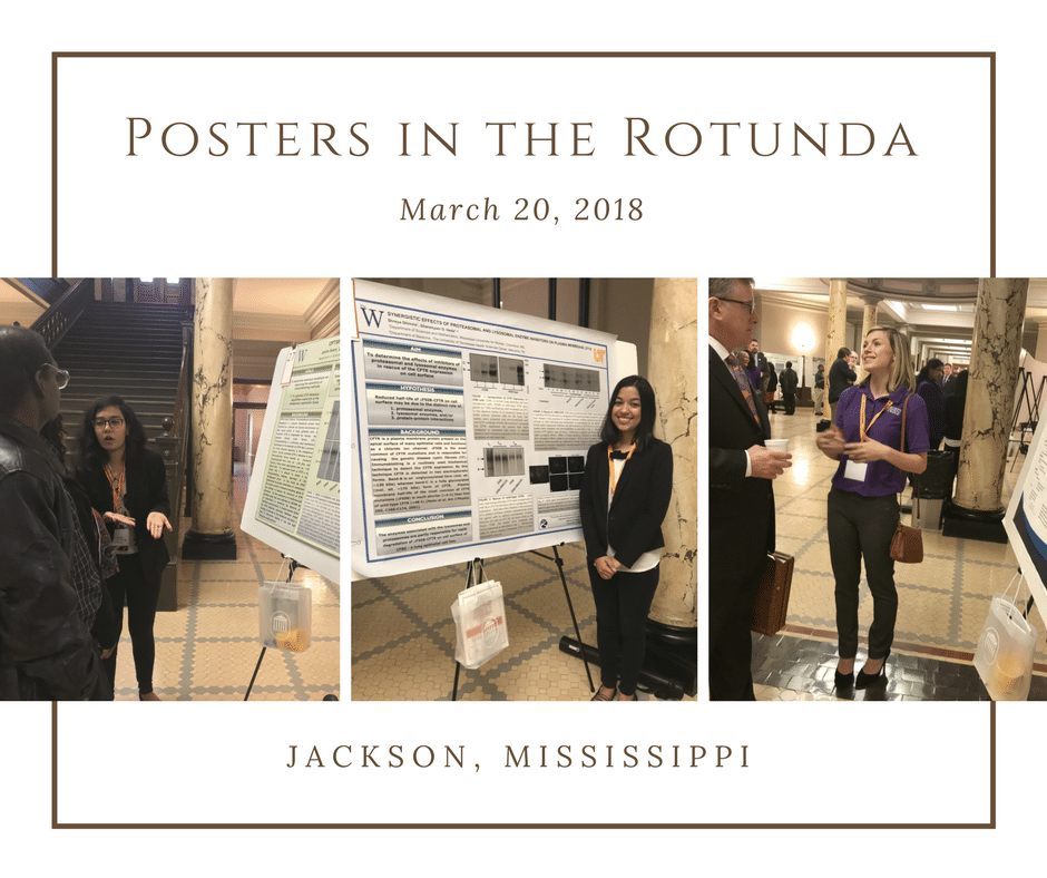 Four Mississippi INBRE Scholars present research at Posters in the Rotunda