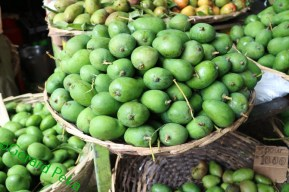 green_mango