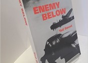 Enemy_Below