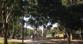 My place of ponderment, Camperdown Memorial Park, Sydney.