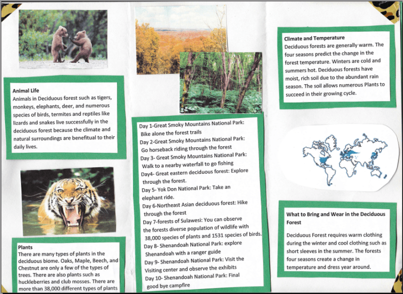 biome brochure project sample biology samples biome travel le imaxes