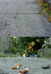 cigarettes, butts, street, renters, Indiana University, Jason Harper