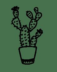 Plant 22