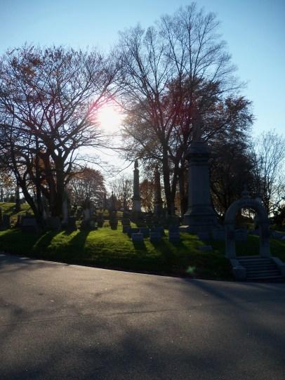 Winter sun over the cemetery.