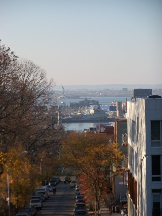 View from Battle Hill to Liberty Island.
