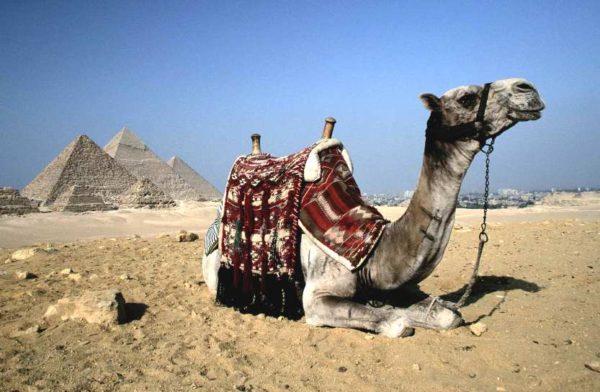 Пирамиды в Республике Египет, расположенной на материке Африка.