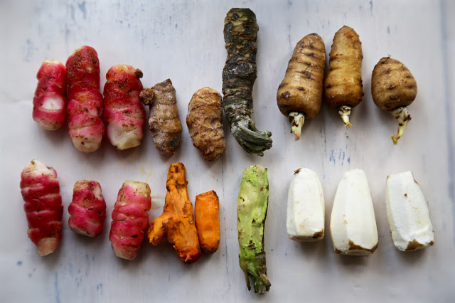 oca, turmeric, wasabi, chervil roots