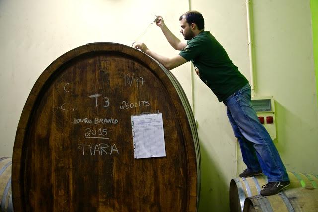 Carlos Raposo (winemaker), Niepoort, Portugal