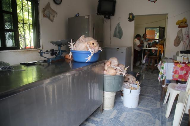 chicken shop,  holbox,yucatan, mexico