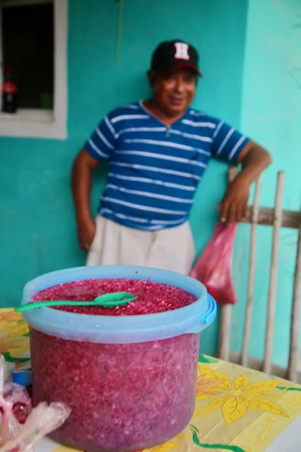 pink pickled onions,  holbox,yucatan, mexico