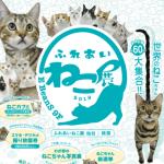 仙台イービーンズ「ふれあい ねこ展」2019 うまい棒プレゼント
