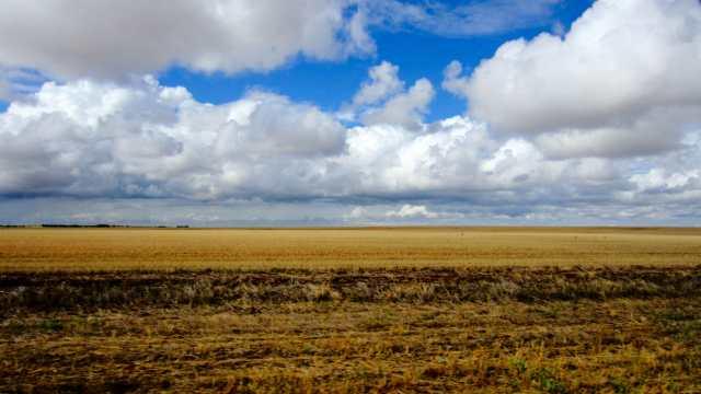 field-min.jpg