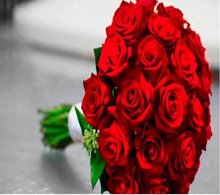 أفضل 8 أفكار لأجمل هدايا لعيد ميلاد حبيبتك موقع مصري