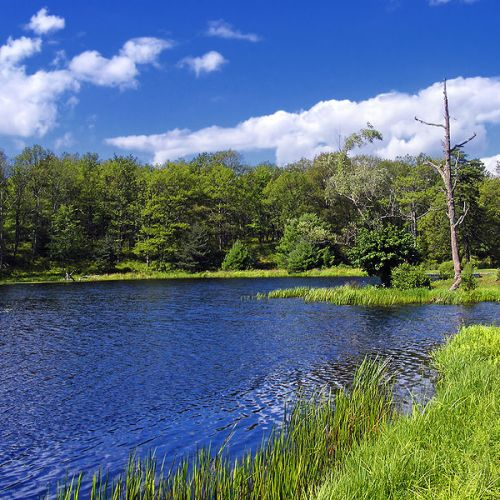 800px-westfall_township_brimmed