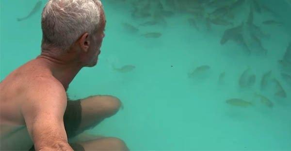 為了證明食人魚會不會胡亂攻擊人,主持人竟然脫光躺進食人魚池…結果嚇死人