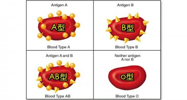 原來得病跟「血型」也有關!什麼血型要注意什麼健康隱患,很重要!千萬要注意!